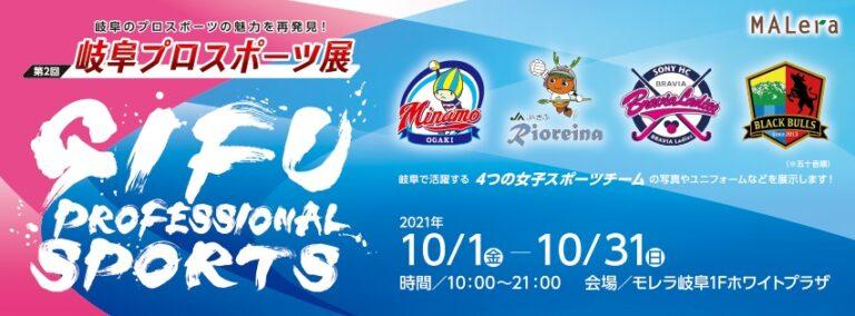 岐阜プロスポーツ展